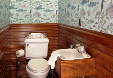 Дизайн туалета: фото в квартире