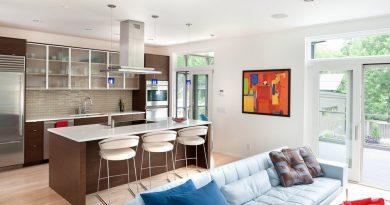 кухня с гостиной совмещенные фото